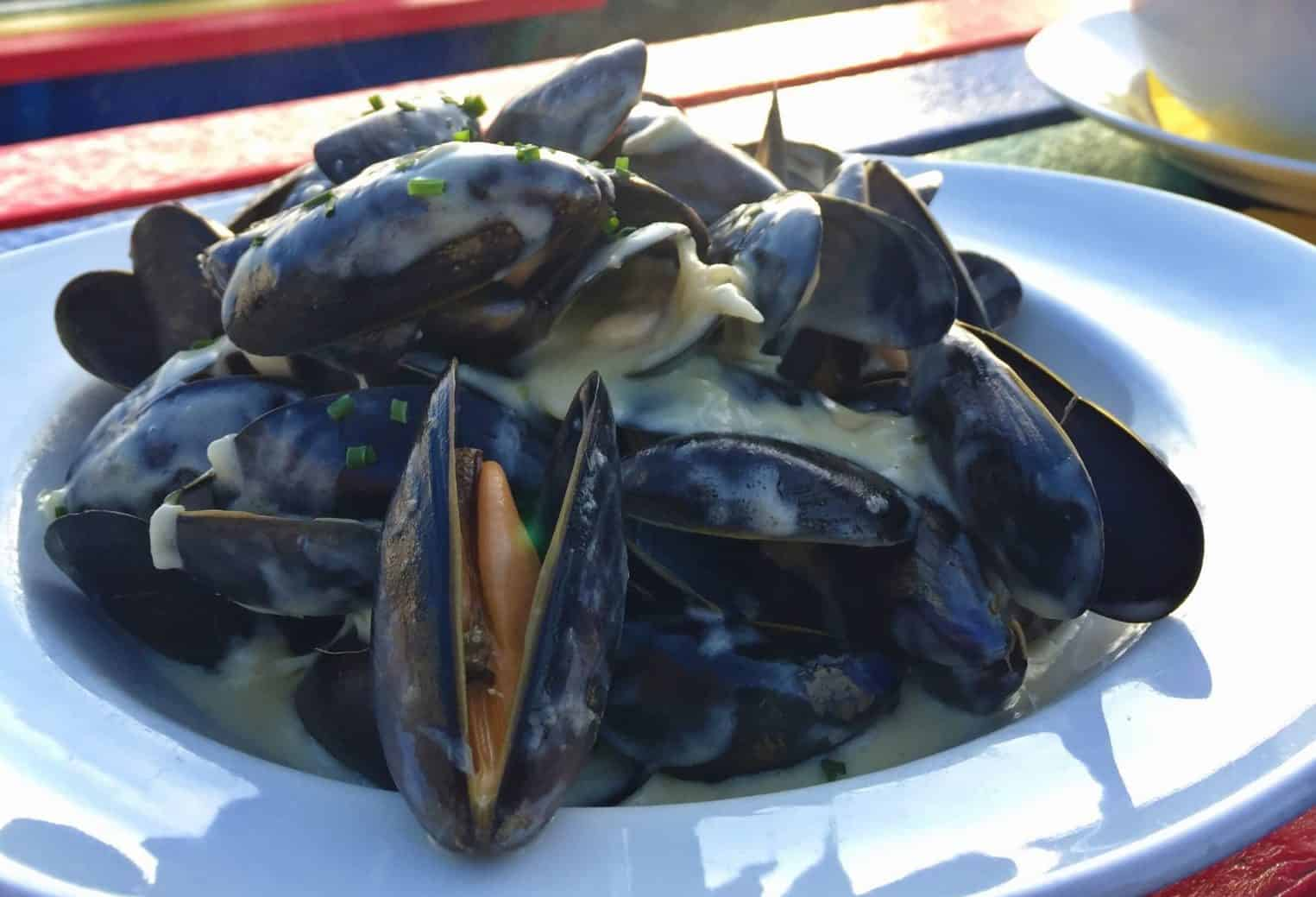 Mussels on the Bay View Terrace